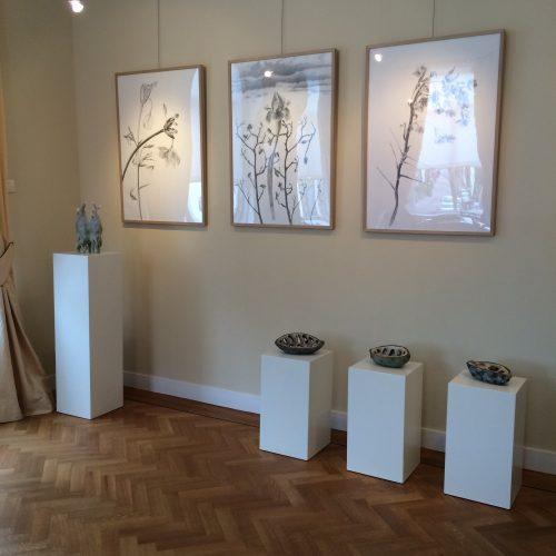 In Galerie het Oude Raadhuis van Warmond