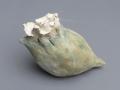 #24 shell